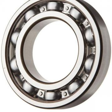 Good Porformance Double Row Angular Contact Ball Bearing 3204